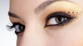 maquillage pour yeux de chat