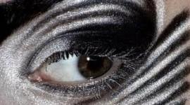 maquillage yeux zebre